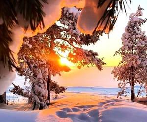 зима, снег, and лес image