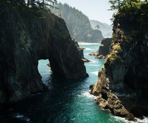 blue, forest, and ocean image