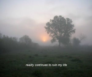 reality, quotes, and pale image