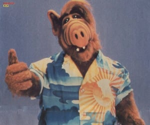 alf, entertainment, and tv image