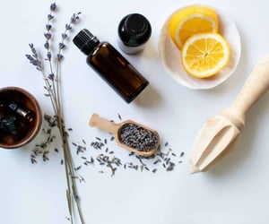 flower, ingredients, and lemon image