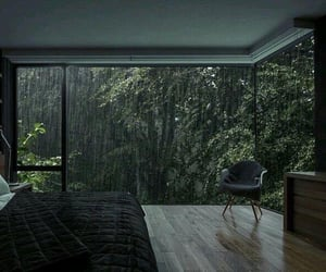 rain, bedroom, and forest image