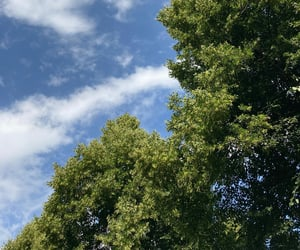 blue, clouds, and green image