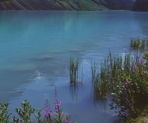 nature, aesthetic, and water image