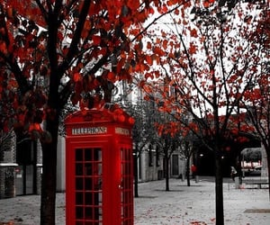 red, london, and autumn image