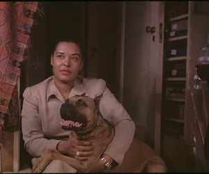 billie holiday, pit bulls rule, and mister was loved image