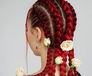 braided hair, hair colors, and braids image