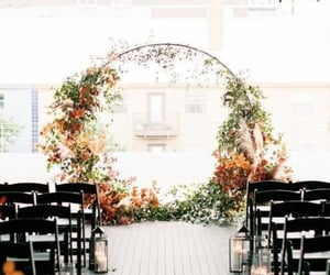 flowers, beautiful, and bride and groom image