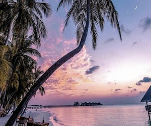 beach, sunset, and paradise image
