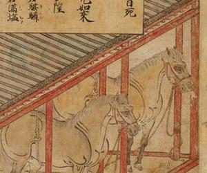 звери, праздники, and Камакура image