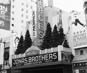 concert, jonas brothers, and music image