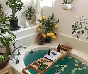 bathroom, plants, and bath image