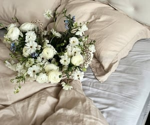 bed, good morning, and roses image