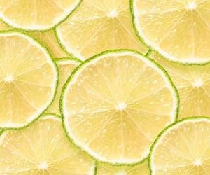 fly, fresh, and lemon image