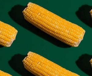 beautiful, wallpaper, and corn image