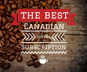 medium coffee, best medium coffee, and best canada coffee image
