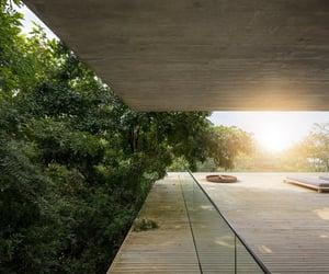brazil, jungle house, and marcio kogan image