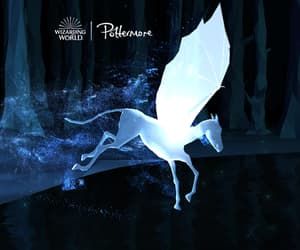 harry potter, thestral, and patronus image