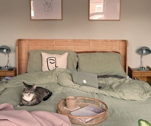 decor, bed, and cat image