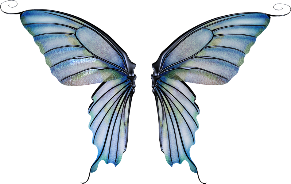 aesthetic, fairy, and fairy wings image