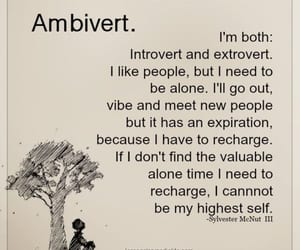 emotions, introvert, and quotes image