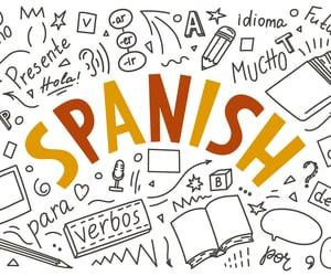 article, adjectives, and español image