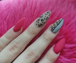 animal print, nail art, and pink nails image