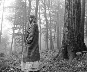 Taylor Swift and folklore image
