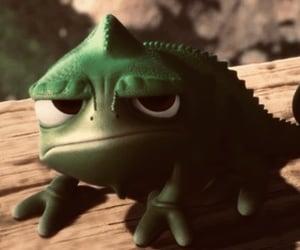 gecko, cute, and lizard image