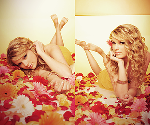 flowers, Taylor Swift, and our song image