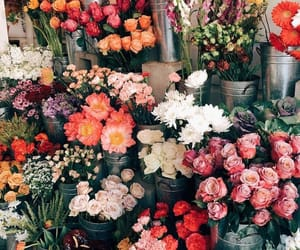 article, flowers, and inspiration image