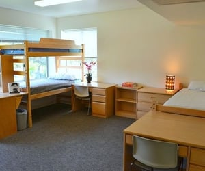 college, cozy, and dorm image