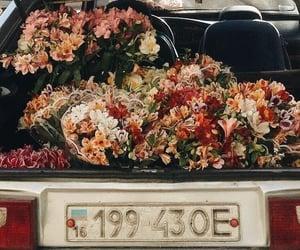 aesthetics, car, and hippie image