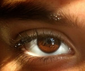 aesthetic and brown eyes image
