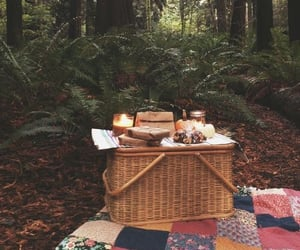 picnic, forest, and nature image