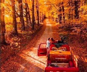 autumn, fall, and couple image