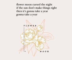 art, flowers, and full moon image