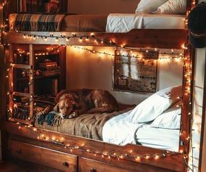 dog, cozy, and light image