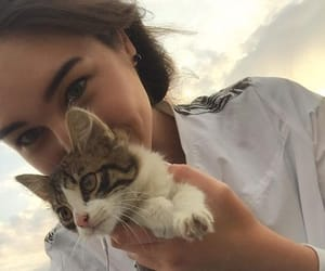 kitten, aesthetic girls, and kitty image