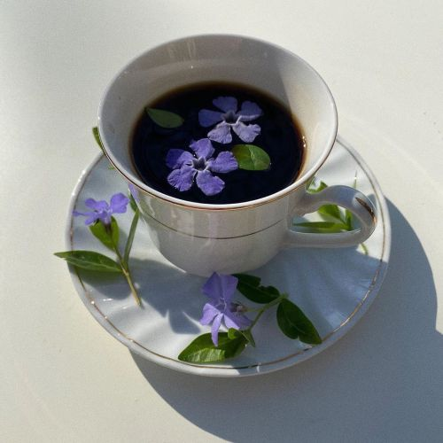 coffee, good morning, and flowers image