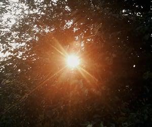 aesthetic, alternative, and daylight image