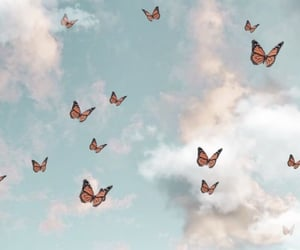 butterflies, clouds, and sky image