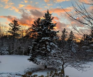 landscape, Maine, and snow image