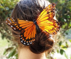 accessories, aesthetic, and butterflies image