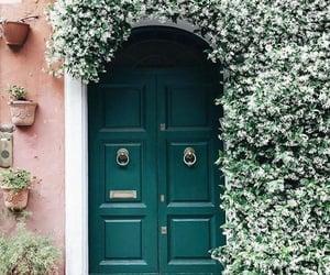 aesthetic, door, and flowers image