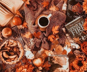 fall and book image