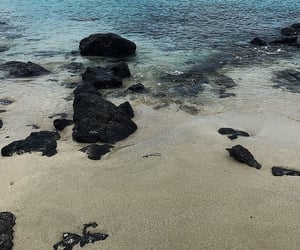 beach and escape image
