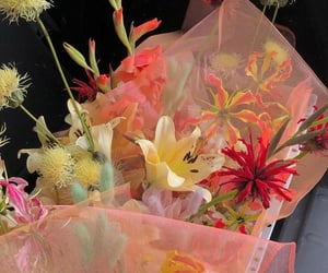 aesthetic, colorful, and flowers image