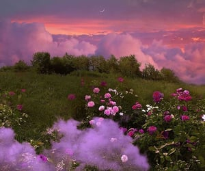 flowers, clouds, and nature image
