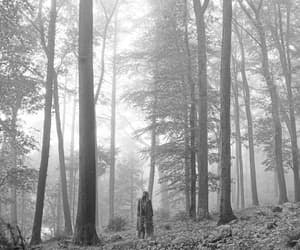 album, photoshoot, and black and white image